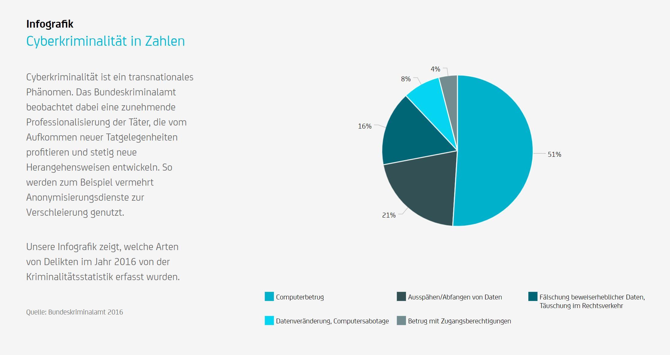 RIS Web- & Software Development - Cybersicherheit für Onlineunternehmen, Grafik zur Cyberkriminalität 2016