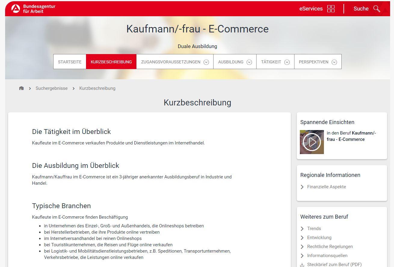 RIS Web- & Software Development - Kaufleute E-Commerce Berufsbild Agentur für Arbeit