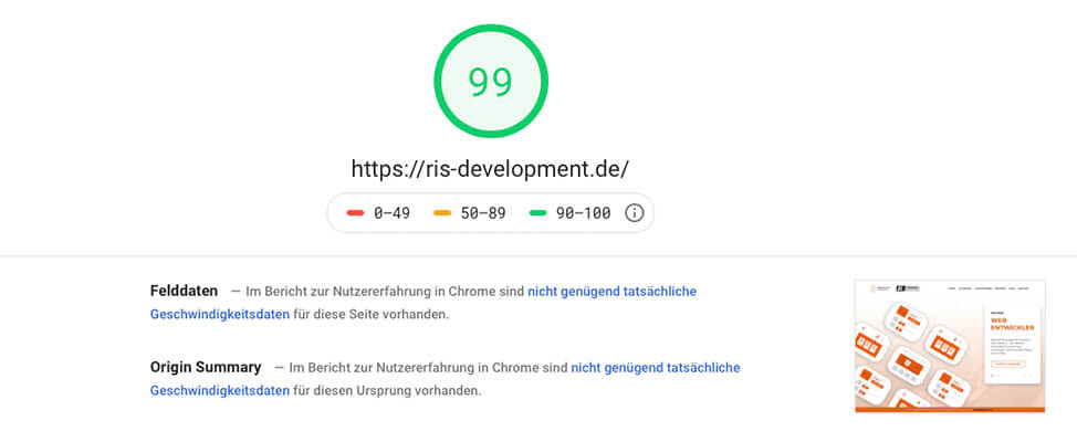 RIS Web- & Software Development - Google PageSpeed Insights - Optimierung der Webseiten Ladegeschwindigkeit