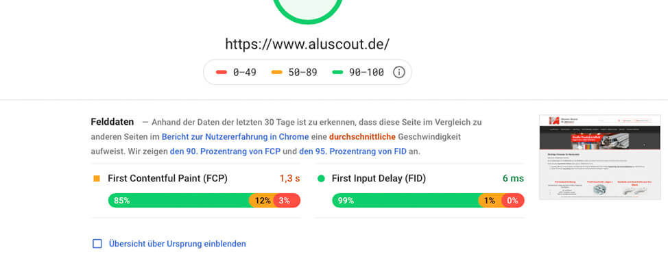 RIS Web- & Software Development - Google PageSpeed Insights - Feld- und Labordaten
