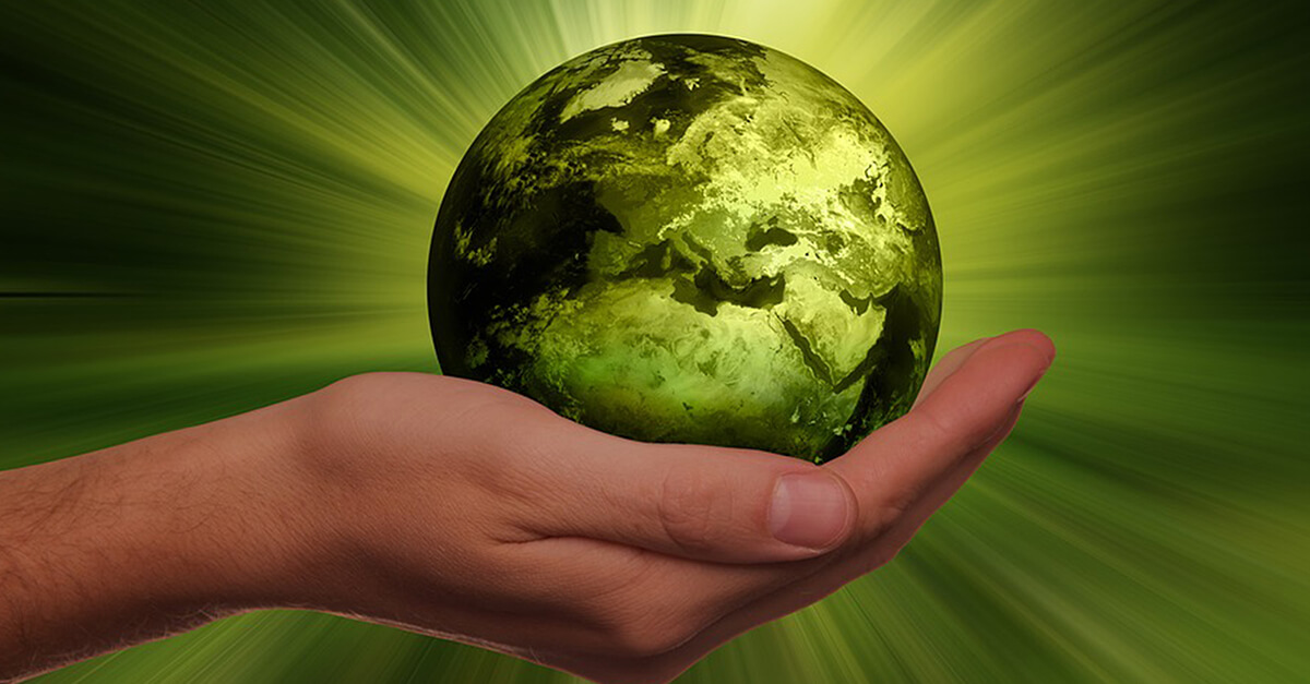 RIS Web- & Software Development - Mit Nachhaltigkeit zur Imageverbesserung